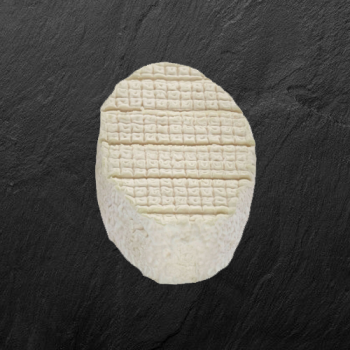 Le XV du Pic «Pavé blanc»