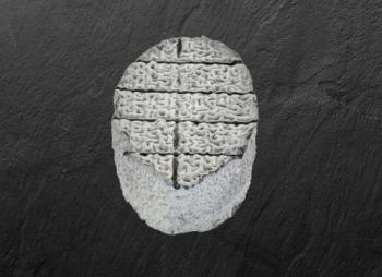 Le XV du Pic «Pavé cendré»